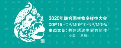 COP15春城之约丨联合国生物多样性大会宣传视频发布!